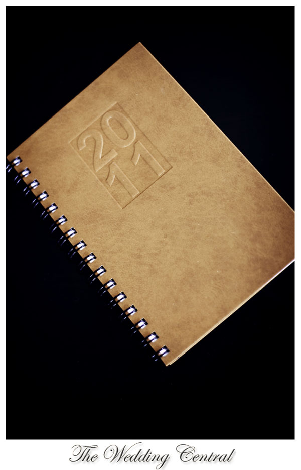 2011 daily planner
